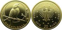 20 Euro 2016 Deutschland 20€ Gold Heimische Vögel - Nachtigall 'D' stgl... 199,00 EUR  zzgl. 5,00 EUR Versand