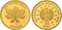 20 Euro 2014 A Deutschland Kastanie Buchstabe A mit Zertifikat st  235,00 EUR kostenloser Versand