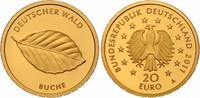 20 Euro 2011 A Deutschland Buche Buchstabe A mit Zertifikat st  265,00 EUR kostenloser Versand