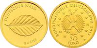 """20 Euro 2011 A Deutschland Serie """"Deutscher Wald"""" - Buche pp.  280,00 EUR  zzgl. 9,90 EUR Versand"""