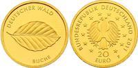 """20 Euro 2011 F Deutschland Serie """"Deutscher Wald"""" - Buche pp.  270,00 EUR  zzgl. 9,90 EUR Versand"""
