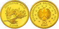 """20 Euro 2013 J Deutschland Serie """"Deutscher Wald"""" - Kiefer pp.  230,00 EUR  zzgl. 9,90 EUR Versand"""