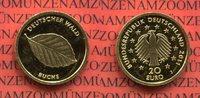 20 Euro Goldmünze 1/8 Unze 2011 J Deutschland BRD Deutscher Wald Buche ... 225,00 EUR  zzgl. 4,20 EUR Versand