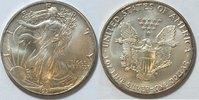 1 $ 1991 USA Silber Eagle  1 oz Silber st  26,00 EUR  zzgl. 4,50 EUR Versand