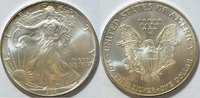 1 $ 1994 USA Silber Eagle  1 oz Silber st  26,00 EUR  zzgl. 4,50 EUR Versand
