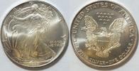 1 $ 1995 USA Silber Eagle  1 oz Silber st  26,00 EUR  zzgl. 4,50 EUR Versand