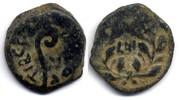 AE Prutah 31 AD Judaea Procurators, Pontius Pilate / Pontius Pilatus 26... 180,00 EUR  zzgl. 10,00 EUR Versand