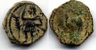 AE 15  Nabatean Kingdom / Nabatea Aretas IV & Shaquelat, 9 BC - 40 AD S... 60,00 EUR