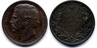 AE Medaille / AE Medal 1879 Schweden / Sweden Polarforscher - Adolf Eri... 35,00 EUR