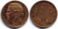AE Medaille / AE Medal 1879 Schweden / Sweden Polarforscher - Adolf Eri... 45,00 EUR