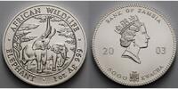 Sambia/Zambia 5000 Kwacha 1 oz Ø 39 mm Elefant - African Wildlife  5. Ausgabe matt