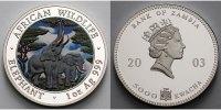 Sambia/Zambia 5000 Kwacha 1 oz Ø 39 mm Elefant - African Wildlife  5. Ausgabe farbig in Kapsel