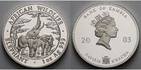 Sambia/Zambia 5000 Kwacha 1 oz Ø 39 mm Elefant - African Wildlife  5. Ausgabe in Kapsel