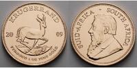 Süd Afrika 1 oz  31, 1g  fein  32, 69 mm Ø Krügerrand 1 oz. - Springbock, 2009 seltener Jahrgang