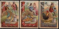 1891 Liebigbilder-Sinnbilder Liebig 194 gut erhalten  30,00 EUR  zzgl. 4,50 EUR Versand