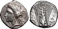 LUCANIA / LUKANIA Nomos  Stater 330-290 BC XF+ Met