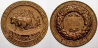 Dortmund, Stadt Bronzemedaille Medaillen.