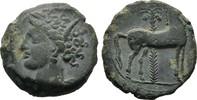 Bronze 350/330 v. Chr. Karthager in Sizilien  Sehr schön  65,00 EUR  +  8,00 EUR 运费