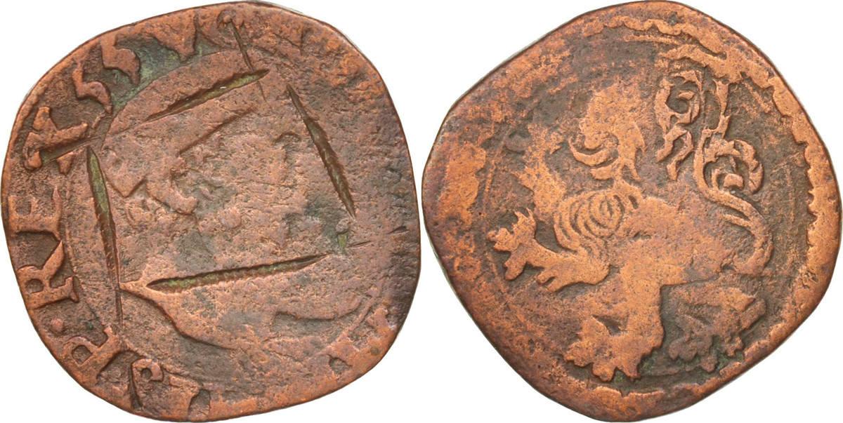 Courte Spanische Niederlande S+, Copper S+