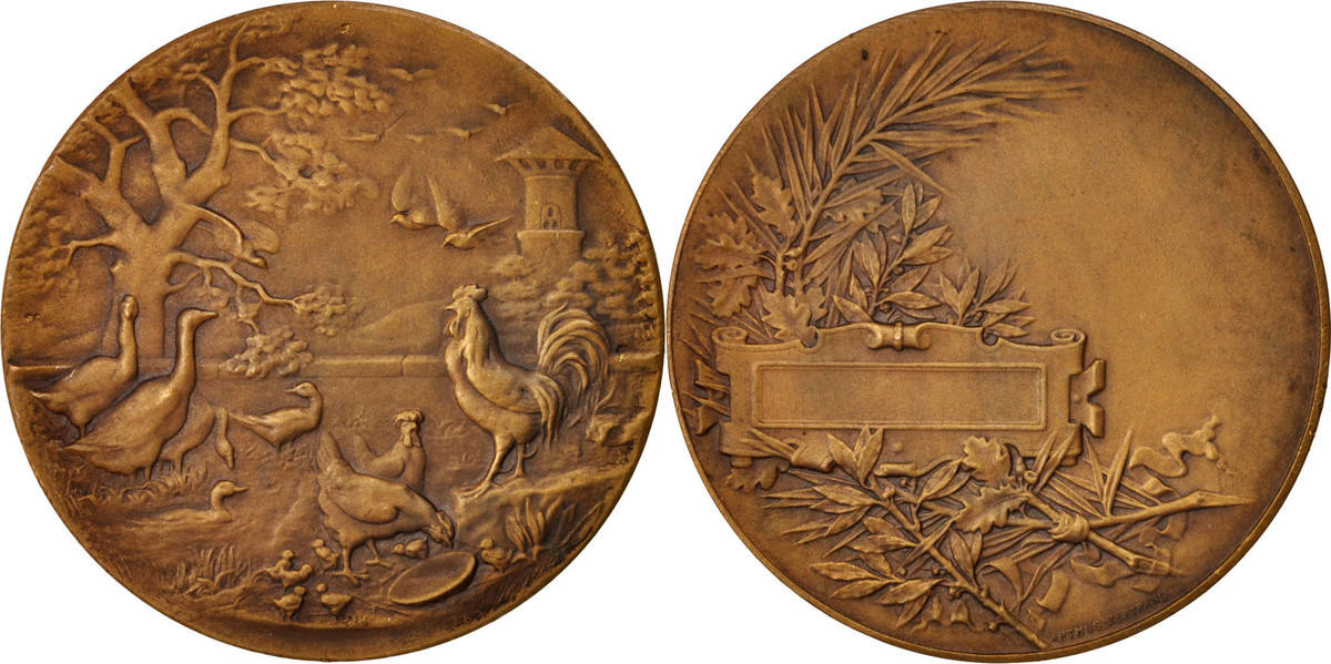 Medal Frankreich Aviculture, Business & industry, SS+, Bronze, 46 SS+