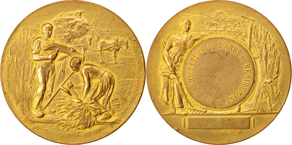 Medal Frankreich Société d'Agriculture de l'Arrondissement de Remiremont VZ