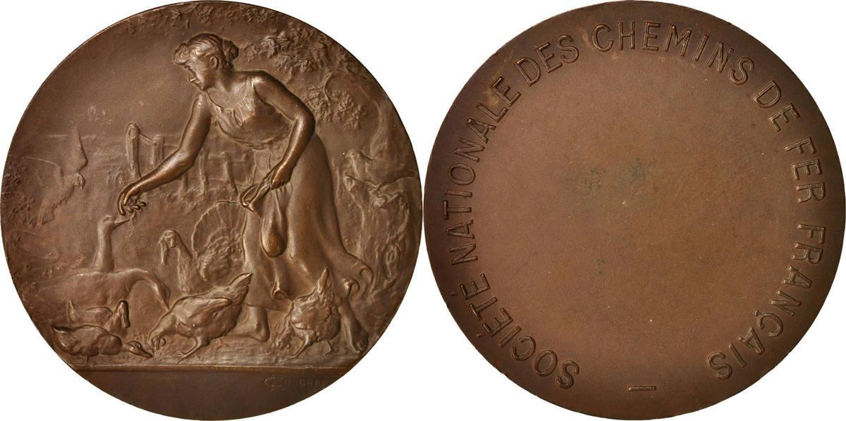 Medal Frankreich Société Nationale des Chemins de Fer Français, Railway VZ