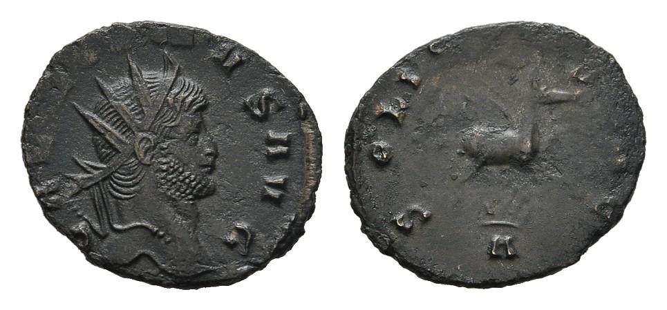 Æ-Antoninian. RÖMISCHE KAISERZEIT Gallienus, 253-268. Vorzüglich / Schön-Sehr schön.