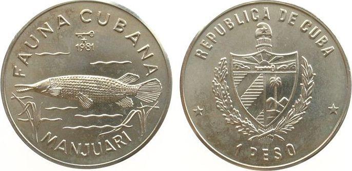 1 Peso 1981 Kuba KN Alligatorfisch, etwas fleckig unz