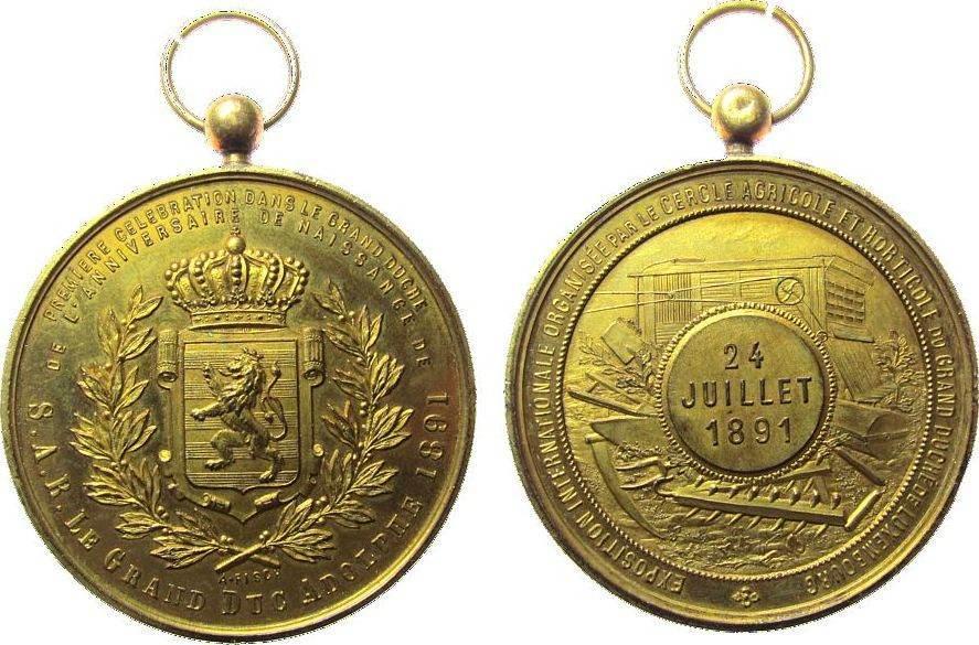 tragbare Medaille 1891 Luxemburg Bronze vergoldet Adolphe (1890-1905) - auf seinen Geburtstag, und die Internationale Landwirtschaftsausstellung, Wappen / landwi vz