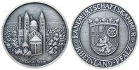 Speyer Prämienmedaille Silber Speyer - Landwirtschaftskammer, Dom zu Speyer / Wappen, ca. 50,5 MM, ca.
