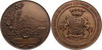 Ungarn-Temesvár, Stadt Bronzemedaille