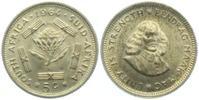 Südafrika 5 Cents 5 Pence - Blume