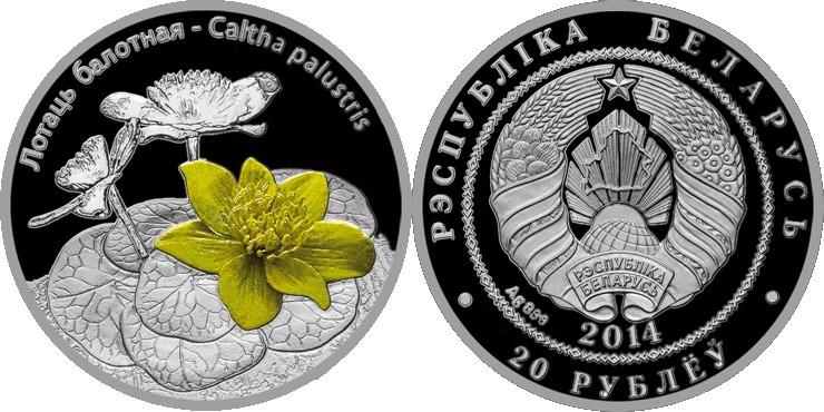 """20 Rubel 2014 Belarus - Weissrussland """"Sumpfdotterblume"""" Polierte Platte PP Farbe"""