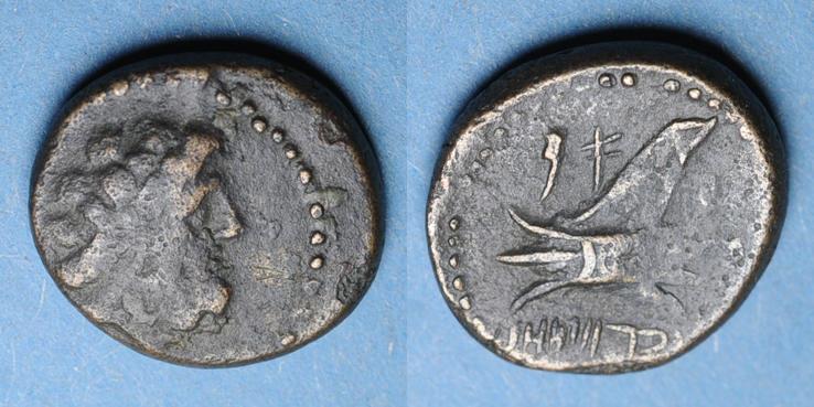 147-146 v. Chr. GRIECHISCHE MÜNZEN Phénicie. Arados. Petit bronze, an 113 =147-146 av. J-C s+ / ss