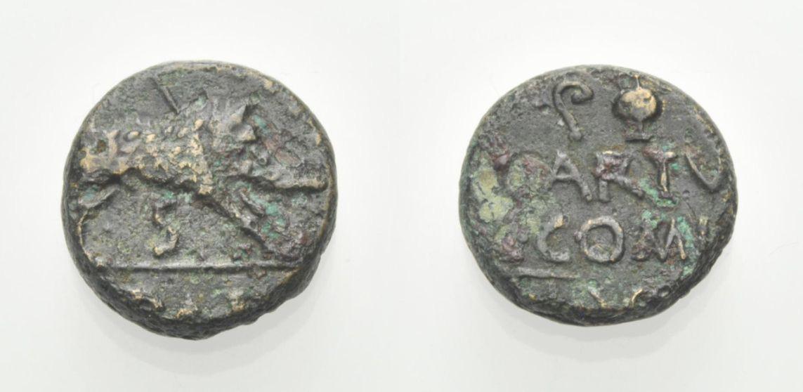 AE Semis 1. Jh. v. Chr. LUKANIEN L. ARTUEIUS UND C. COMINIUS, DUOVIRI Knapp sehr schön