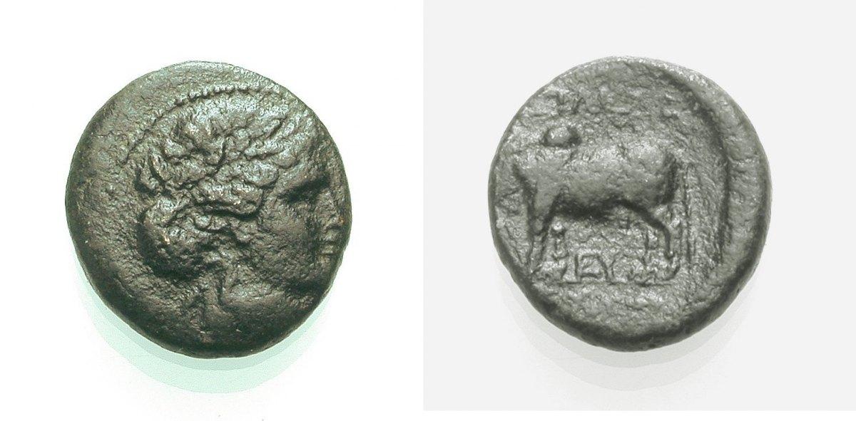 AE Kleinbronze 246-226 v. Chr. KÖNIGREICH DER SELEUKIDEN SELEUKOS II. KALLINIKOS Sehr schön