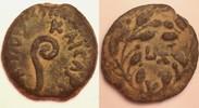 AE Prutah 29/30 AD Judaea Pontius Pilate / Pilatus 26-36 AD - Crucifixi... 300,00 EUR  zzgl. 12,00 EUR Versand