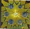 UNGARN Forint KMS 6 Werte 2012 : 5-200 Forint Neue Typen MAGYABORSZAG Inschrift